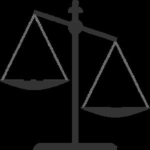Den juridiske vej